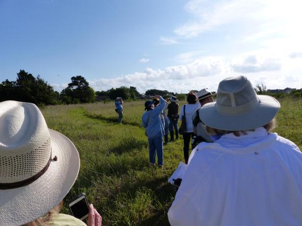 Birding at Deer Park Prairie on May 24, 2014, led by Damien Carey
