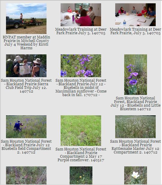 June July activities gallery screen shot 140715