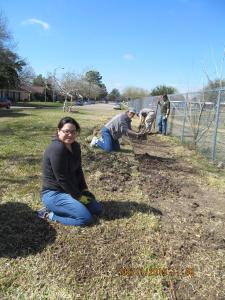 Come help prepare prairie plant demonstration garden on Deer Park Prairie Workdays
