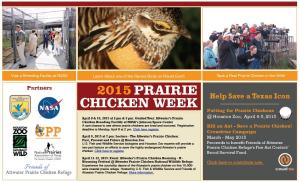 prairie chick week 2015