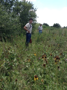 Pablo & Kelly at Deer Park Prairie on 7/13/15 in front of the rough leaf coneflower (Rudbeckia grandiflora)