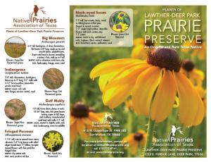 LDPP Plant ID Brochure