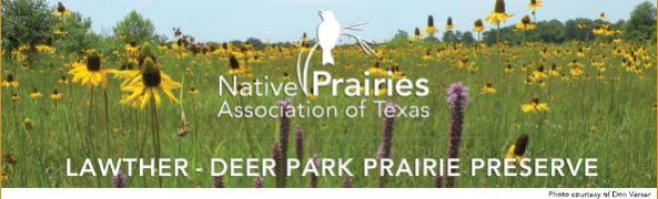 Fall Prairie Day with HNPAT @ Deer Park Prairie Preserve | Deer Park | Texas | United States