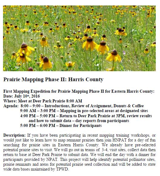 NPAT's first prairie mapping expedition in Harris County. Participation in previous mapping classes/talks NOT a requirement.