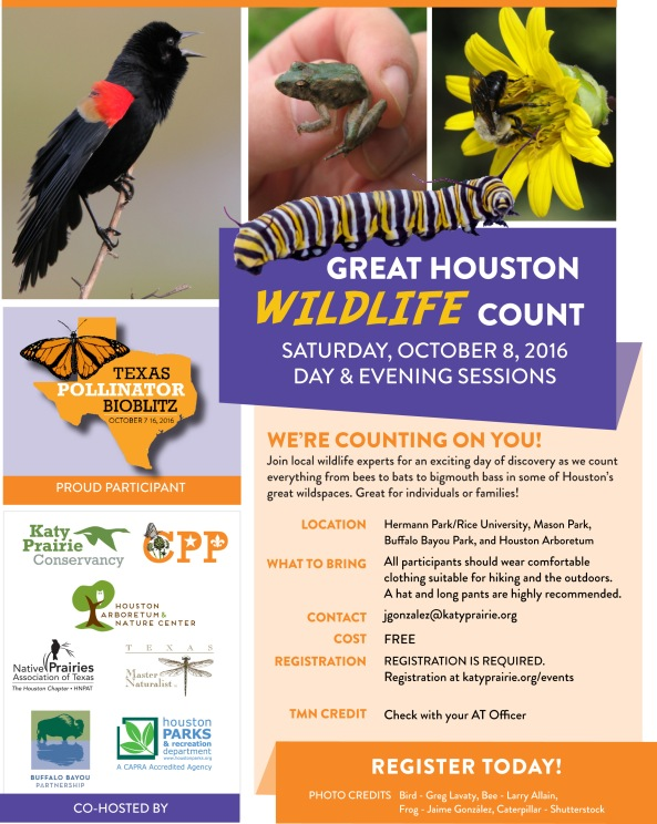 Great Houston Wildlife Count V8
