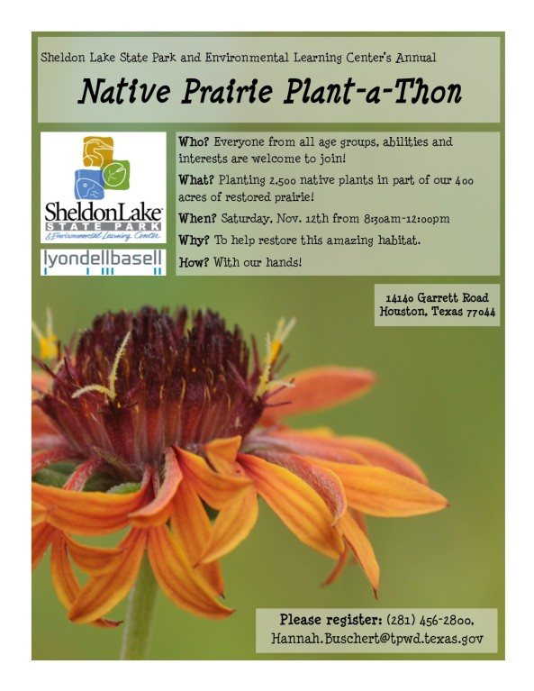 plant-a-thon-flyer-2016