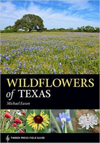 Wild Flowers of TX Eason