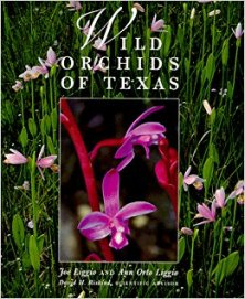 Wild Orchids of Texas