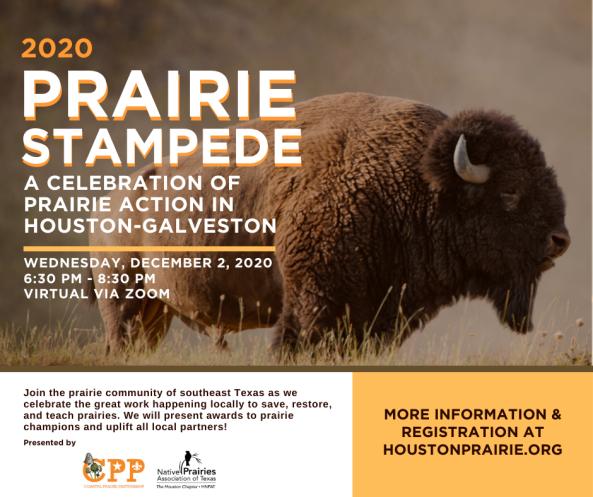 2020 Prairie Stampede @ Zoom